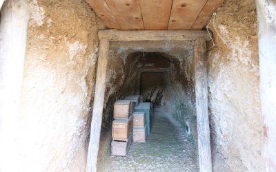 Propera campanya d'excavacions arqueològiques al Campament